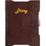 Diary Graphic
